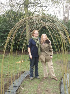willow arch before