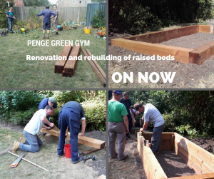 Renovation and rebuilding of raised beds